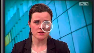 Video: Havørn kløvet i to af snurrende vindmølle