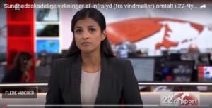 Tusindevis af danskere lever dagligt med støj fra vindmøller