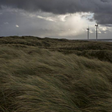 Flere hundrede klager ligger og venter – nej tak til flere vindmøller